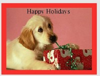 doggy holiday greetings